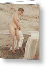 By The Bath Tub Greeting Card