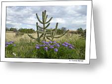 By The Cactus Greeting Card