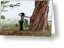 By The Cypress Greeting Card