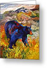 By The River - Black Bear Greeting Card