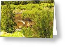 By The Stream Greeting Card