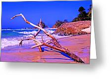 Byron Beach Australia Greeting Card