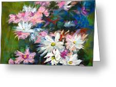 C And D  Cosmos And Daisy That Is Greeting Card