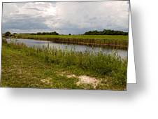 C54 Canal In Florida Greeting Card