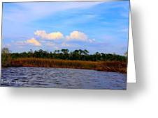 Cabbage Palms And Salt Marsh Grasses Of The Waccasassa Preserve Greeting Card
