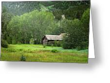 Cabin In The Aspens  Greeting Card