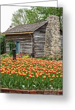 Cabin In The Tulips Greeting Card