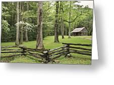 Cabin Greeting Card