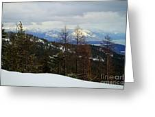Cabinet View Greeting Card