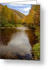 Cabot Trail Autumn 2015 Greeting Card