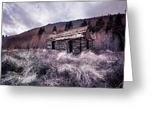 Cache Cabin Greeting Card