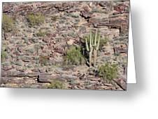 Cacti Twins Greeting Card