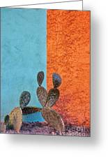 Cactus And Colorful Wall Greeting Card