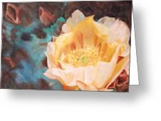 Cactus Blossom 1 Greeting Card