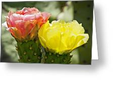 Cactus Bouquet Greeting Card