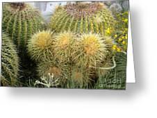 Cactus Family Greeting Card