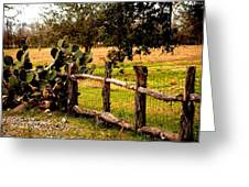Cactus Fence Line Greeting Card