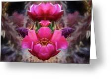 Cactus Flower 07-02 S08 Greeting Card