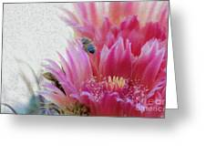 Cactus Flower And A Busy Bee Greeting Card