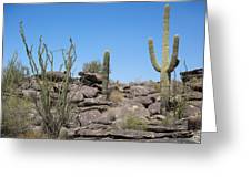 Cactus Land Greeting Card