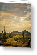 Cactus Morning Greeting Card