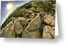 Cactus Rock Greeting Card