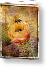 Cactus Spring Beauty W Frame Greeting Card