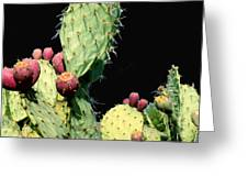 Cactus Two Greeting Card