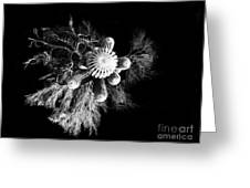 Cactus With Palo Verde Greeting Card