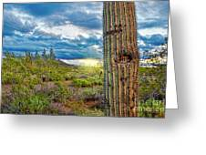 Cactus With Teeth Greeting Card