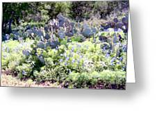Cactuses  Greeting Card