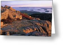 Cadillac Mountain At Sunrise Greeting Card