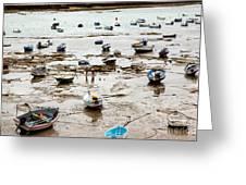 Cadiz Spain Low Tide Greeting Card