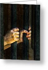 Caged 2 Greeting Card by Jill Battaglia