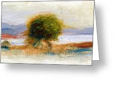 Cagnes Landscape 1910 Greeting Card