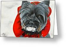 Cairn Terrier In The Snow Greeting Card