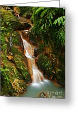Caldeira Velha Park Greeting Card