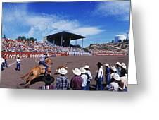 Calf Roping Event At Ellensburg Rodeo Greeting Card