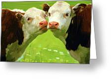 Calfs Greeting Card
