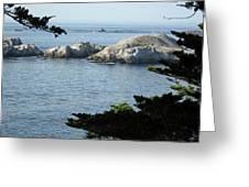 California Coast Vii Greeting Card