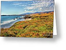 California Coast Wildflowers On Cliffs Greeting Card