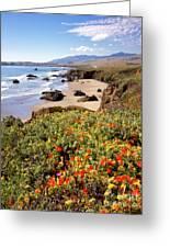 California Coast Wildflowers Vertical Format Greeting Card