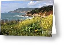 California Coast With Wildflowers And Fence Greeting Card