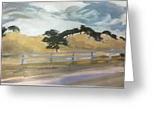 California East Bay Oaks Greeting Card