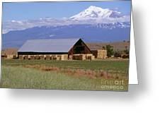 California Hay Barn Greeting Card