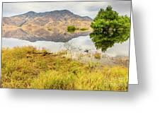 California Kaweah Lake Scene Greeting Card