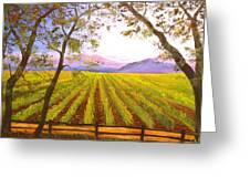 California Napa Valley Vineyard Greeting Card