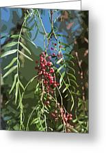 California Pepper Tree Leaves Berries Abstract Greeting Card