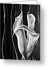 Callas Lilies Trio Greeting Card
