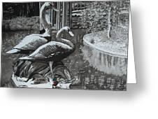 Callaway Mallard Ducks Greeting Card
